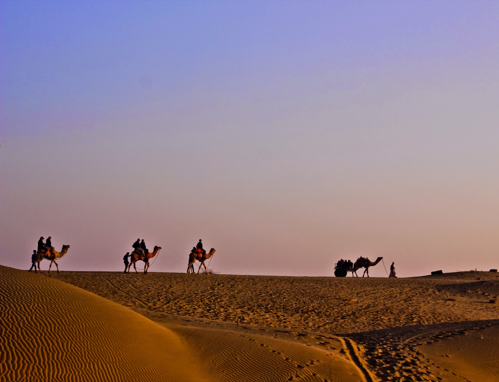 View of camel safari at the Sam Sand Dunes, Jaisalmer