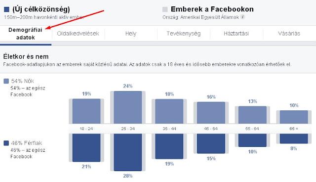 facebook egyedi célközönség