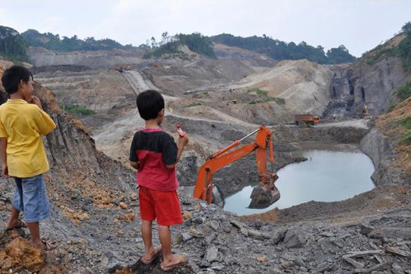 Greenpeace sarankan lembaga keuangan ikuti langkah OJK
