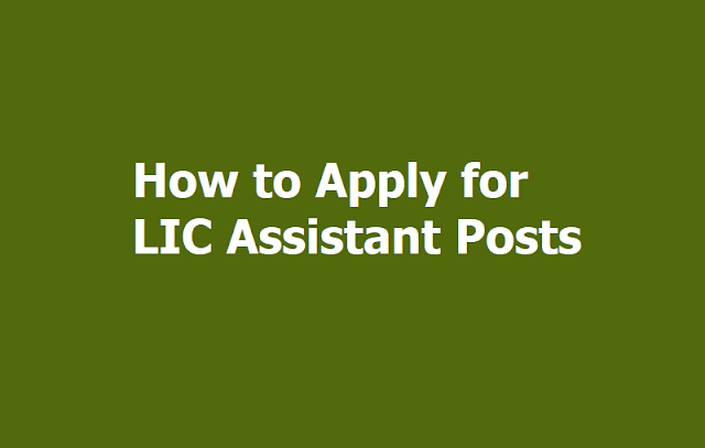 LIC Assistants Recruitment 2019: How to Apply Online for LIC Assistant Posts?