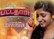 Pattathari 2017 Tamil Movie Watch Online