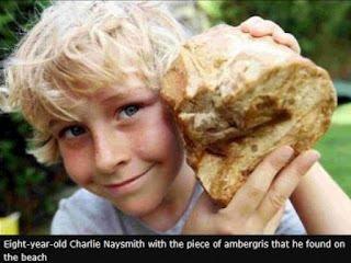 Budak 8 Tahun Jadi Jutawan Kerana Muntah Ikan Paus
