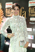Poonam Kaur in Beautiful Floor Length Gown at IIFA Utsavam Awards 2017  Day 2  Exclusive 19.JPG