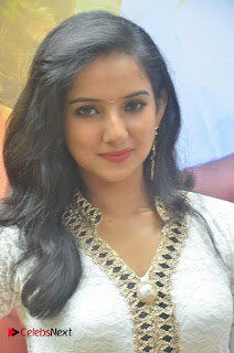 Leema Babu Pictures at Summave Aaduvom Movie Audio Launch ~ Celebs Next