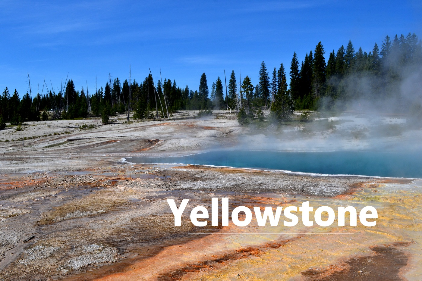 Bassin Yellowstone National Park