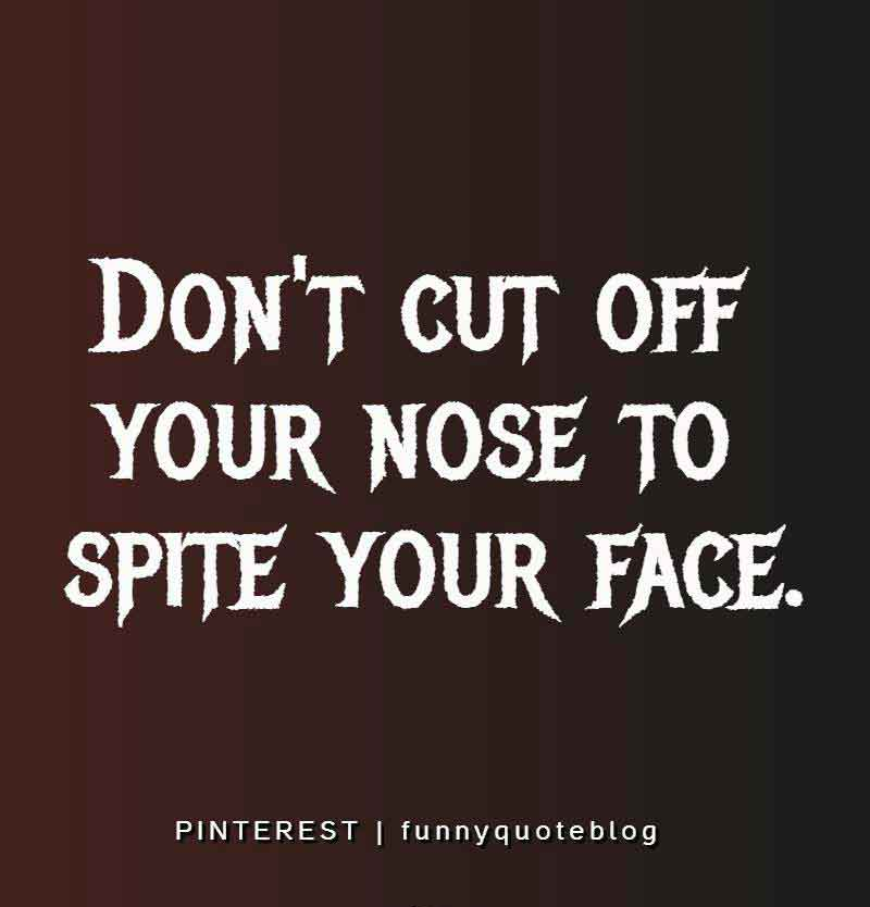 Don't cut off your nose to spite your face. ― American proverbs wisdom
