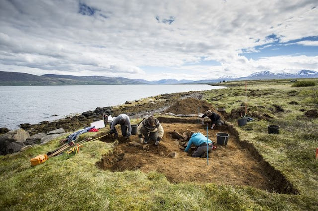 Viking shield, spear points and human bones recovered from Viking boat burial in N. Iceland