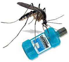 Listerine Kills Mosquitoes