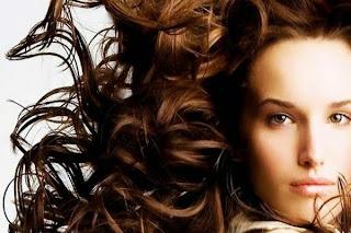 5 plantas para evitar a queda dos cabelos