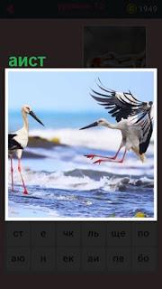 651 слов два аиста на берегу танцуют и летают 12 уровень