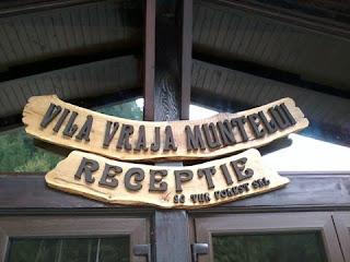 firme rustice, firme pictate pe lemn, litere volumetrice