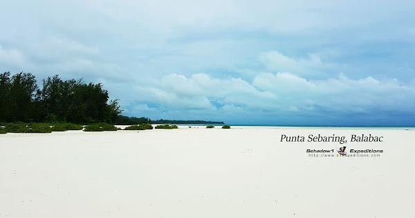 Punta Sebaring Balabac - Schadow1 Expeditions