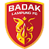 Plantel do Perseru Badak Lampung FC 2019