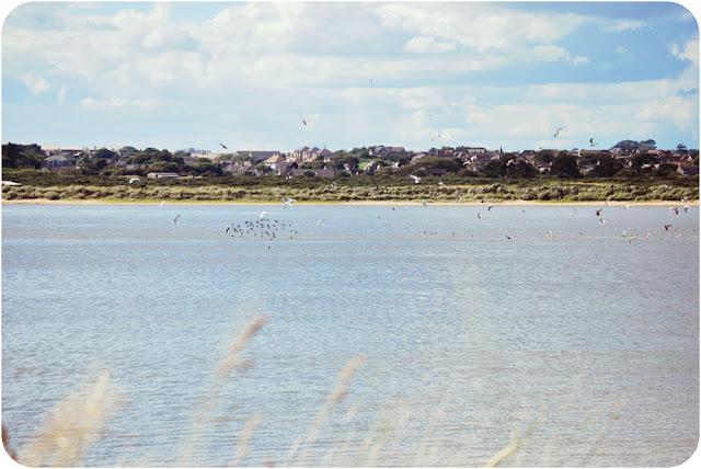 Newburgh beach Aberdeenshire