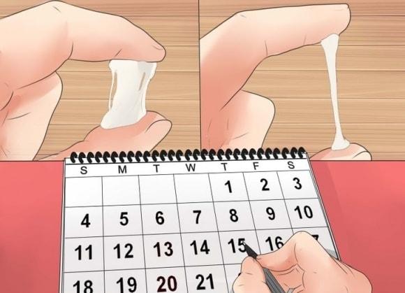Biểu hiện của cơ thể báo hiệu rụng trứng giúp bạn quyết định thụ thai thành công cao