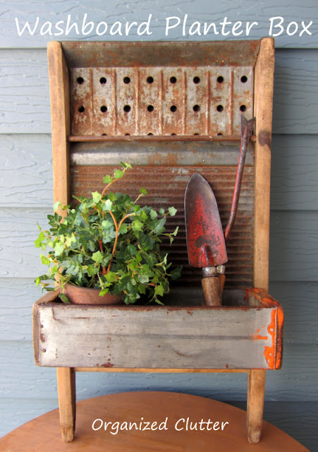 Washboard Junk Garden Planter #washboard #drawerrepurpose #repurpose #junkgarden #gardenjunk #containergarden