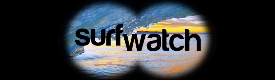 SurfWatch...Who's watching the waves?