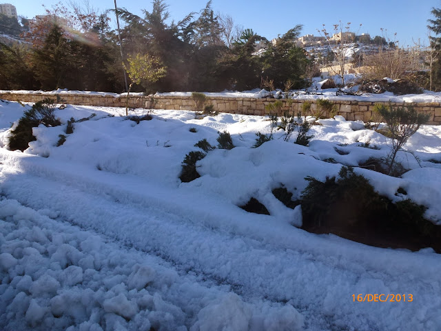 שלג נערם בירושלים