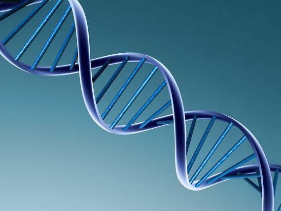 DNA download besplatne pozadine za desktop 1600x1200