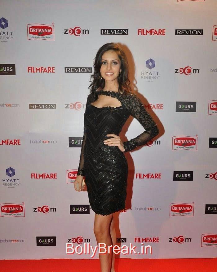60th Britannia Filmfare Awards pre-awards Party