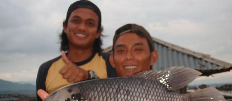 Resep Umpan Mancing Ikan Gurame dan Nila Sekarang ini