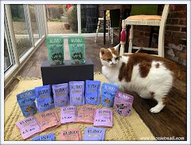 Blink Cat Food Review @BionicBasil® Amber 1