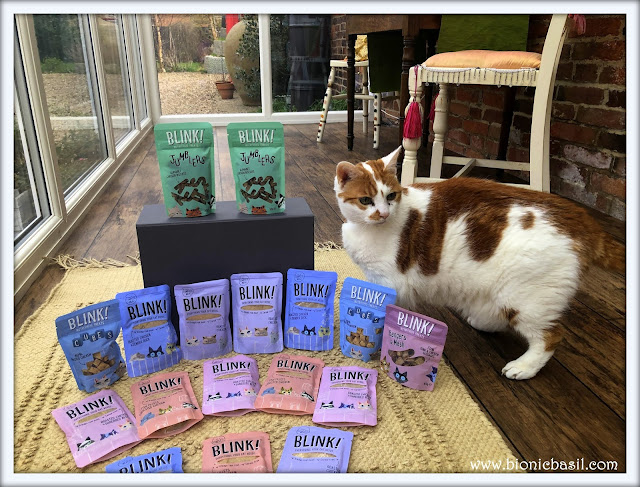 Blink Cat Food Review @BionicBasil® Amber 1