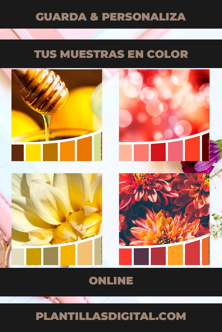 guarda_personaliza_tus_muestras_en_color_online