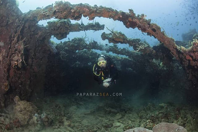 Scuba Diving, Underwater Photography, Manila, Paparazsea