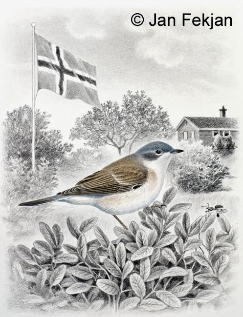 Bilde av digigrafiet 'Møller'. Digitalt trykk laget på bakgrunn av en tegning av en fugl. Illustrasjon av fuglen møller, Sylvia curruca. Hovedmotivet er fuglen møller, som sitter i en busk. I bakgrunnen er det en flaggstang med et norsk flagg og et lite hus med busker og trær rundt. Fuglen er i farger mens resten av bildet er i svart-hvitt. Bildet er i høydeformat.