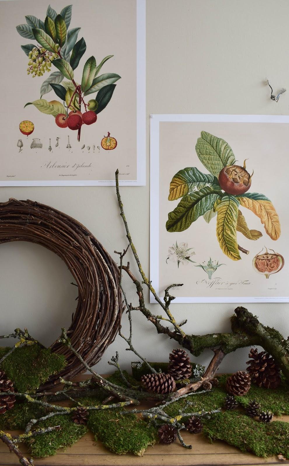 Kalender 2019 mit botanischen Zeichnungen Drucke Poster Deko Dekoidee Wanddeko von DUMONT teNeues Naturdeko mit Moos Ästen Kranz Zapfen