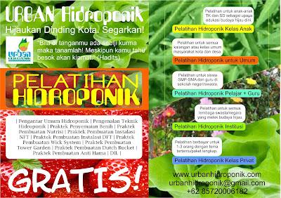 urban hidroponik, urban farming, pelatihan hidroponik