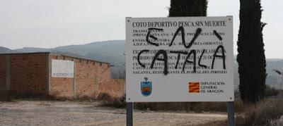 català, cartell, spray, pintada, coto, moviment franjolí llengua