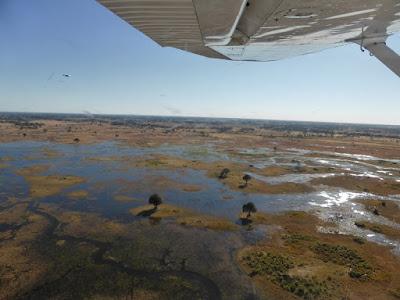 El Delta del rio Okawango