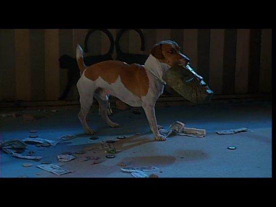 Фильм маска собака картинки прикольные