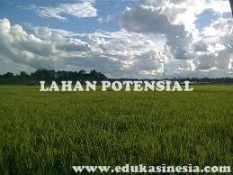 Pengertian Lahan Potensial, Pemanfaatan  Lahan Potensial, Serta Upaya Pelestarian Lahan Potensial Dengan Penjelasan Lengkap