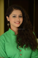Geethanjali in Green Dress at Mixture Potlam Movie Pressmeet March 2017 040.JPG