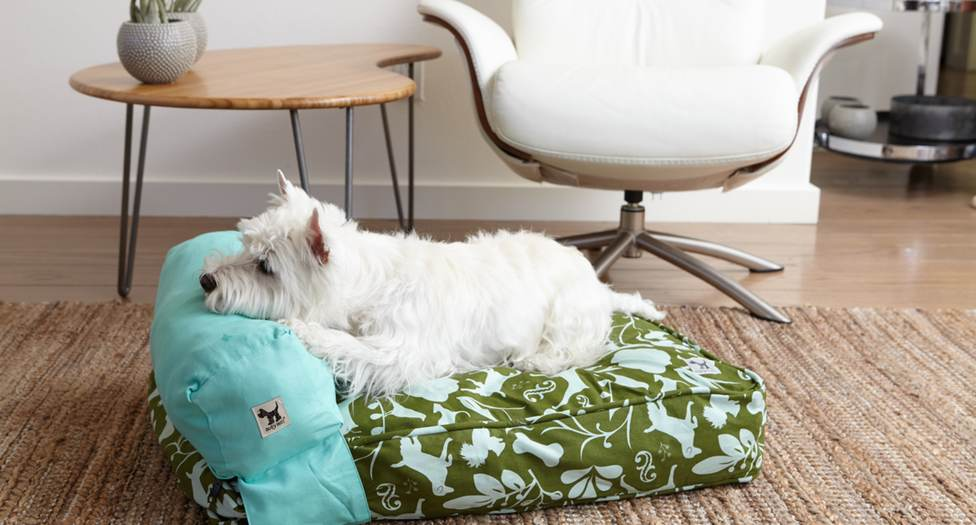 to dog with love: upcycle and sleep in style with molly mutt pet