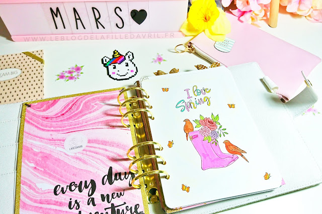 BULLET JOURNAL : Plan with me, Mars 2019.
