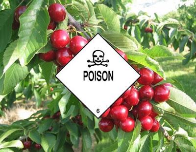 makanan-mengandung-racun