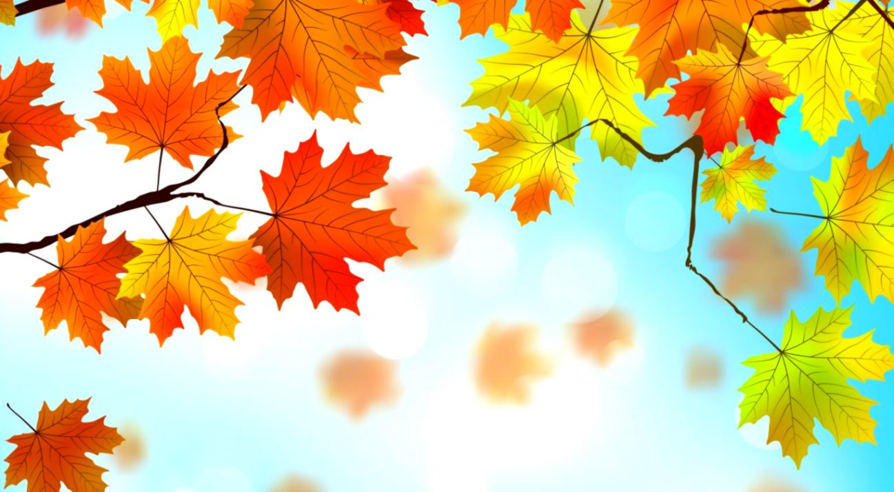 Free Download Autumn Wallpaper Wallpapers Heroes