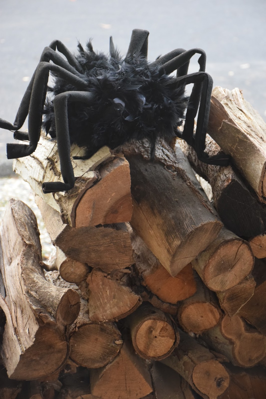 krismulkey: how to make a big hairy spider for halloween