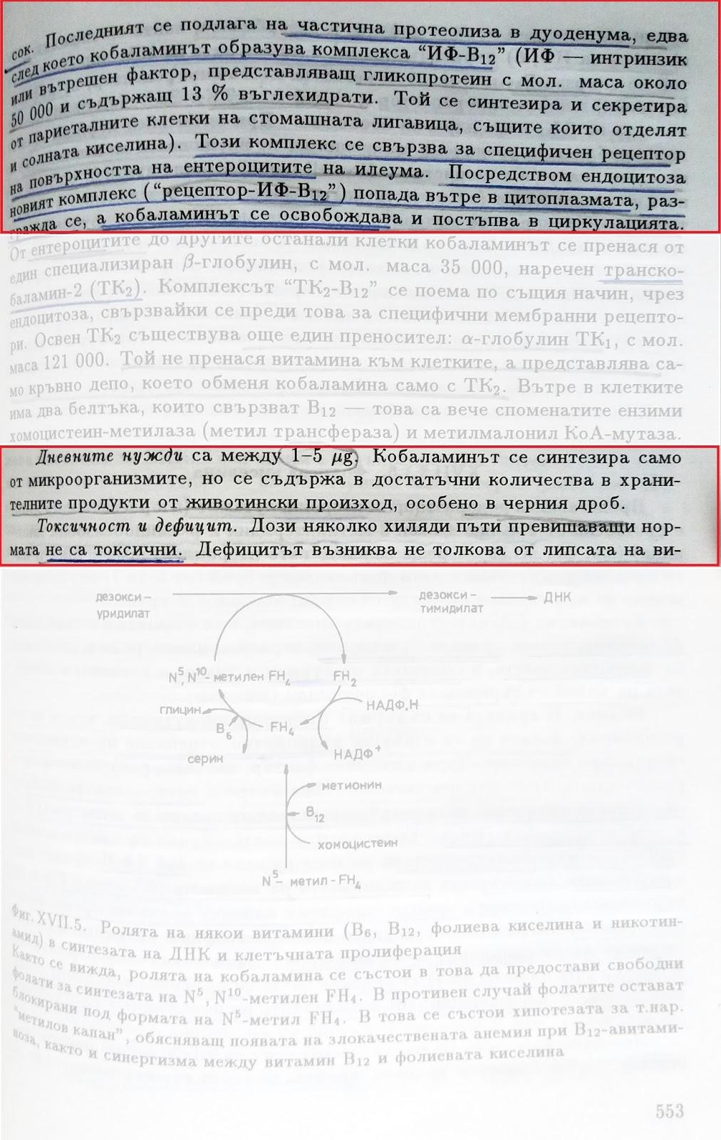 Учебник по биохимия стр.553