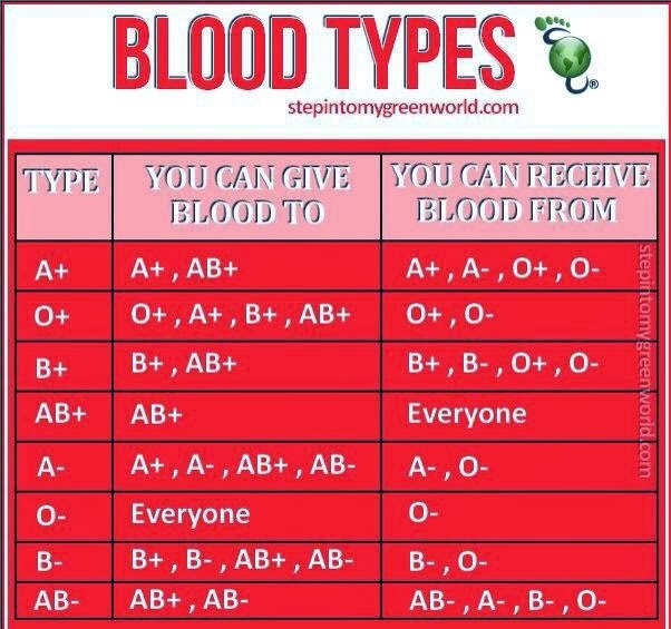 jenis jenis darah