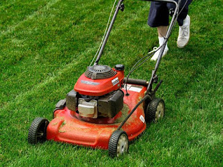 The 3 Proper Lawn Mower Height Settings