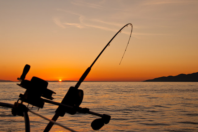 fishing pole bending in the sunset