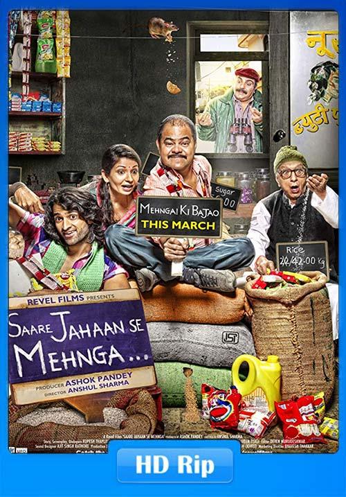 Saare Jahaan Se Mehnga 2013 WebRip Hindi 720p x264 | 480p 300MB | 100MB HEVC