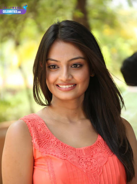Tollywood Celebrities Nikitha Narayan Profile