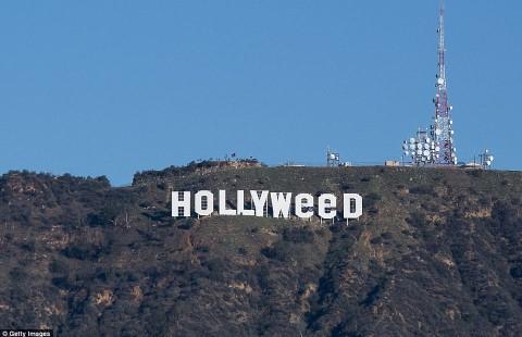 Dijahili Orang Iseng, Tulisan 'Hollywood' Berubah Jadi 'Hollyweed'