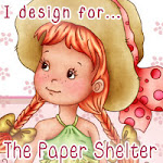 Proud to be Chosen for The Paper Shelter Challenge Blog